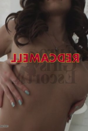 Tamika massage parlor and escort